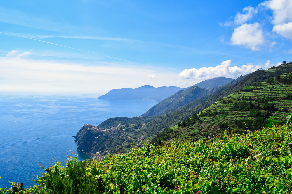 Hike from Manarola to Corniglia, which can be seen in the distance