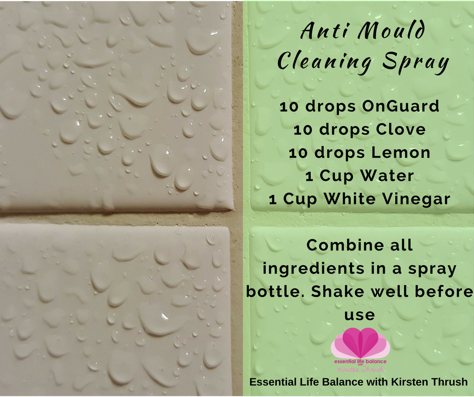 cleaning 1 - Anti mould.png