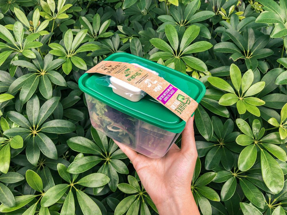 Shake Salad-2.jpg