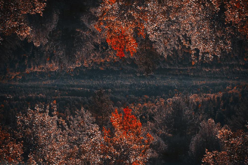 red outlands.jpg