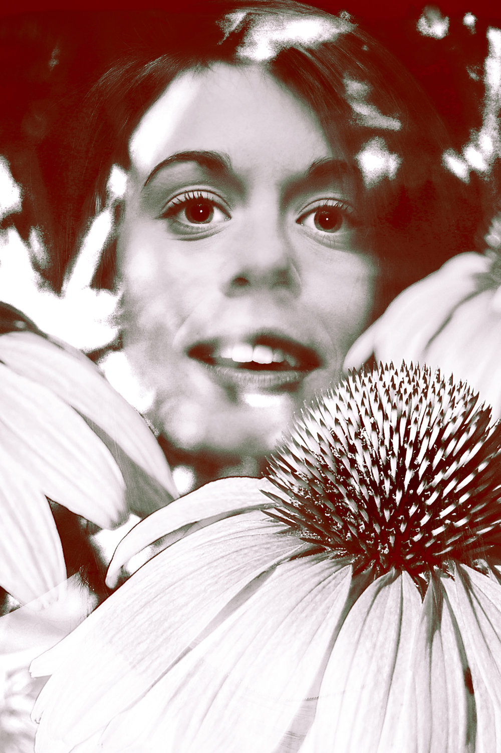 dazed in daisies.jpg