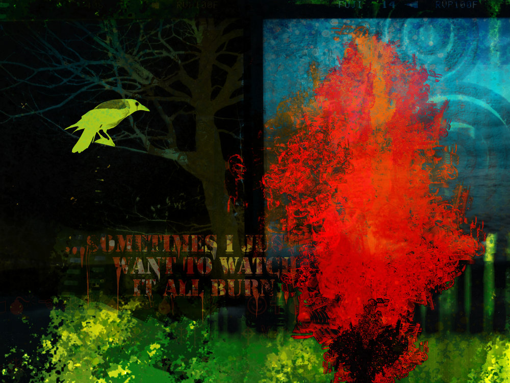 the flaming tree.jpg