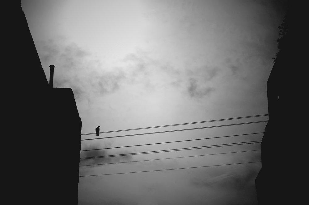 alone in the air.jpg