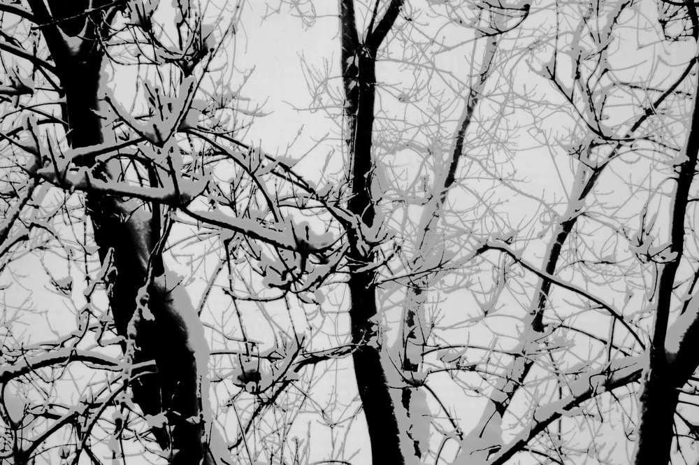 winter touch.jpg