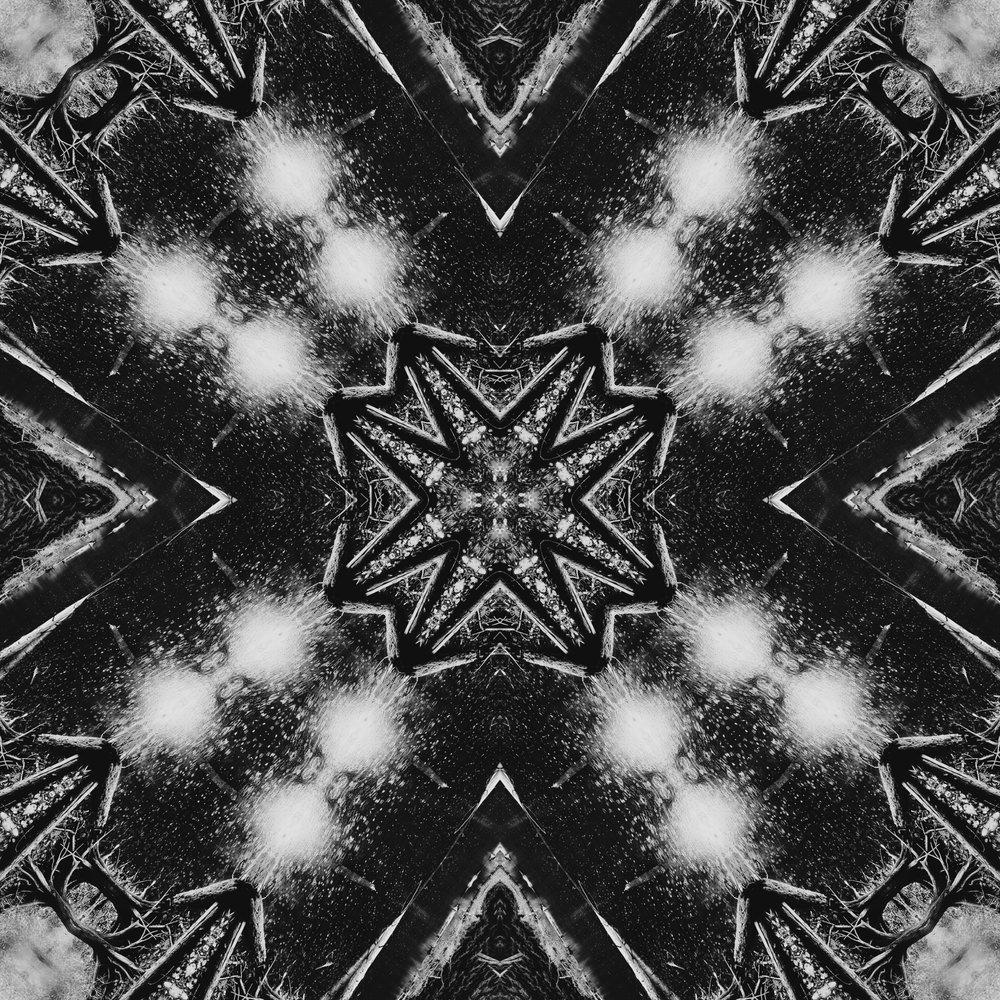 multivesa.jpg