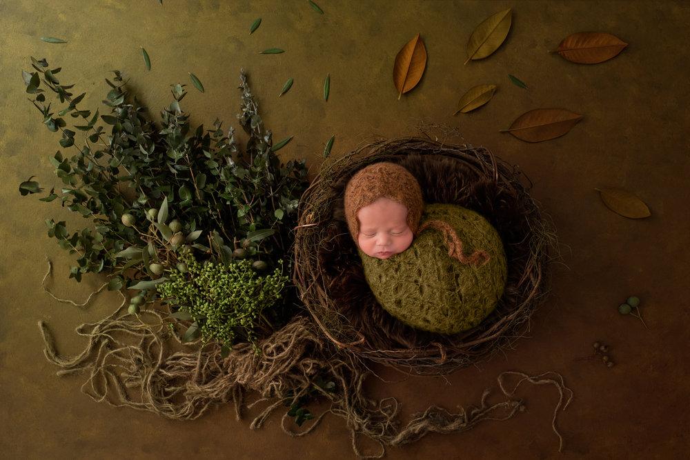 Serena Jones Photography - Cruz Koloa Pakileata - 6.jpg