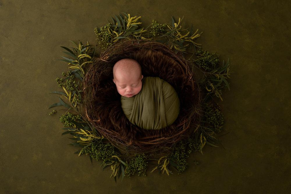 Serena Jones Photography - Cruz Koloa Pakileata - 24.jpg