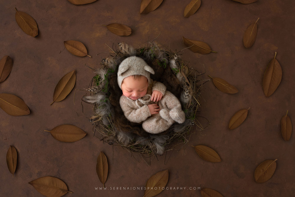 Serena Jones Photography -  Theodore Davis - 13 Fb.jpg