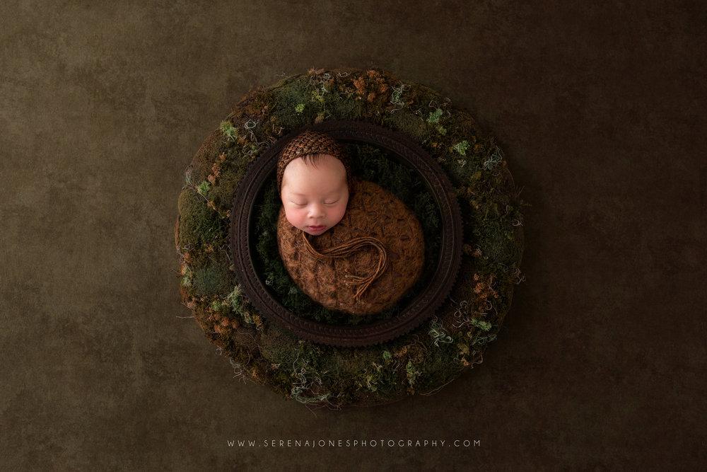 Serena Jones Photography -  Theodore Davis - 15 Fb.jpg