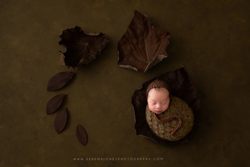 Serena Jones Photography -  Theodore Davis - 16 FB.jpg