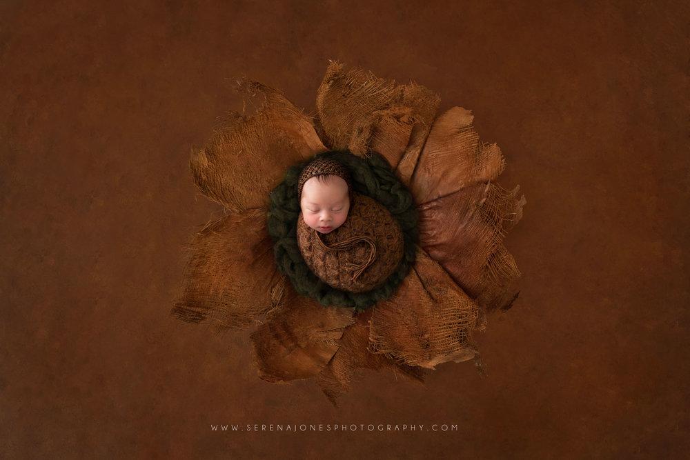 Serena Jones Photography -  Theodore Davis - 18 FB.jpg