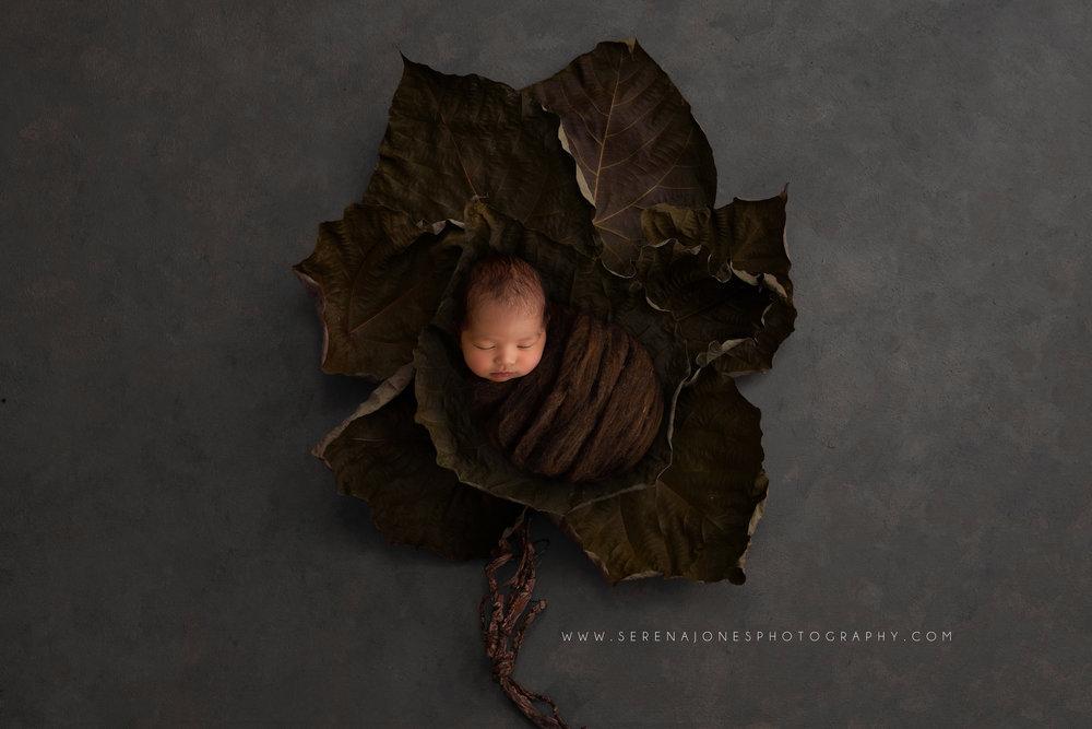 Serena Jones Photography - Tobias Akira Mateo - 36 FB.jpg