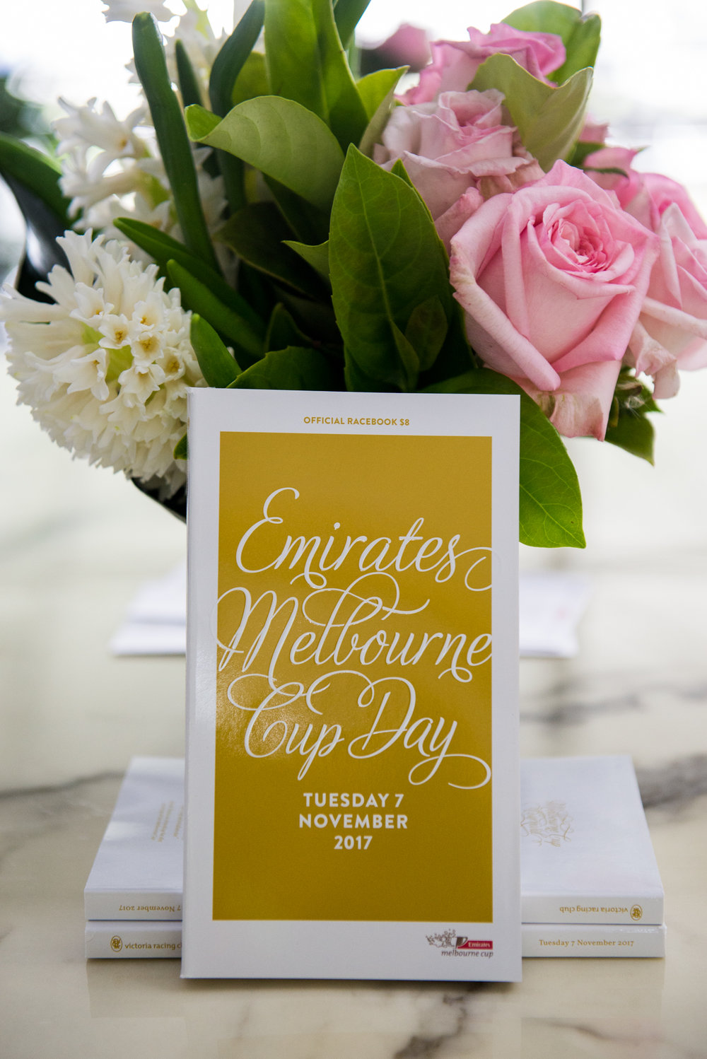 Dow Chemical   Melbourne Cup Carnival    Click here for gallery