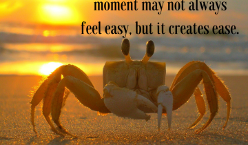 Staying-in-the-present-moment-may-not-always-feel-easy-but-it-creates-ease.-2.png