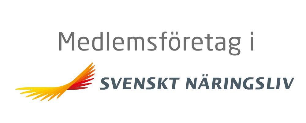 Svenskt Näringsliv.jpg