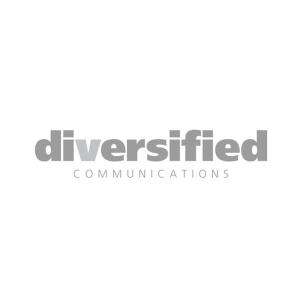 The-Windsor-Workshop-Logo-diversified-communications.jpg