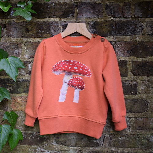 Toadstool sweatshirt - Boys' clothes with nature motifs often only feature savage beasts, blood dripping from their fangs. Weird. This range of jumpers features incredibly lifelike illustrations on back and front. This one's our favourite - the cheeky sparrow on the back is the icing on the cake. Or toadstool.Walk in the Woods sweatshirt  £38  Stay and Bird