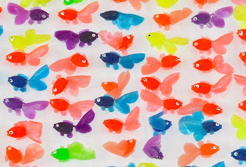 fiskar.jpg