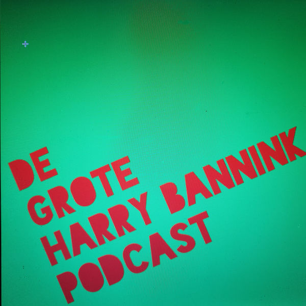 20. De Grote Harry Bannink Podcast - Gijs Groenteman