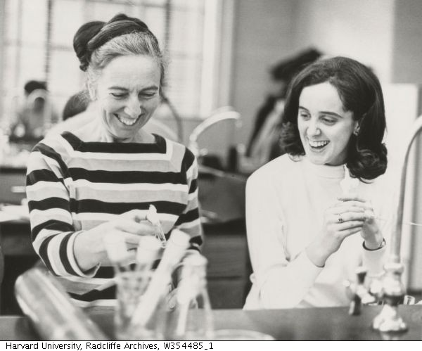 Ruth Hubbard and Kathy Kleeman, ca. 1970-1979 (Harvard University, Radcliffe Archives, W354485_1