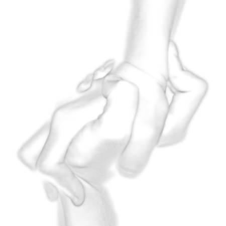 Hand_as_teneste_2.jpg