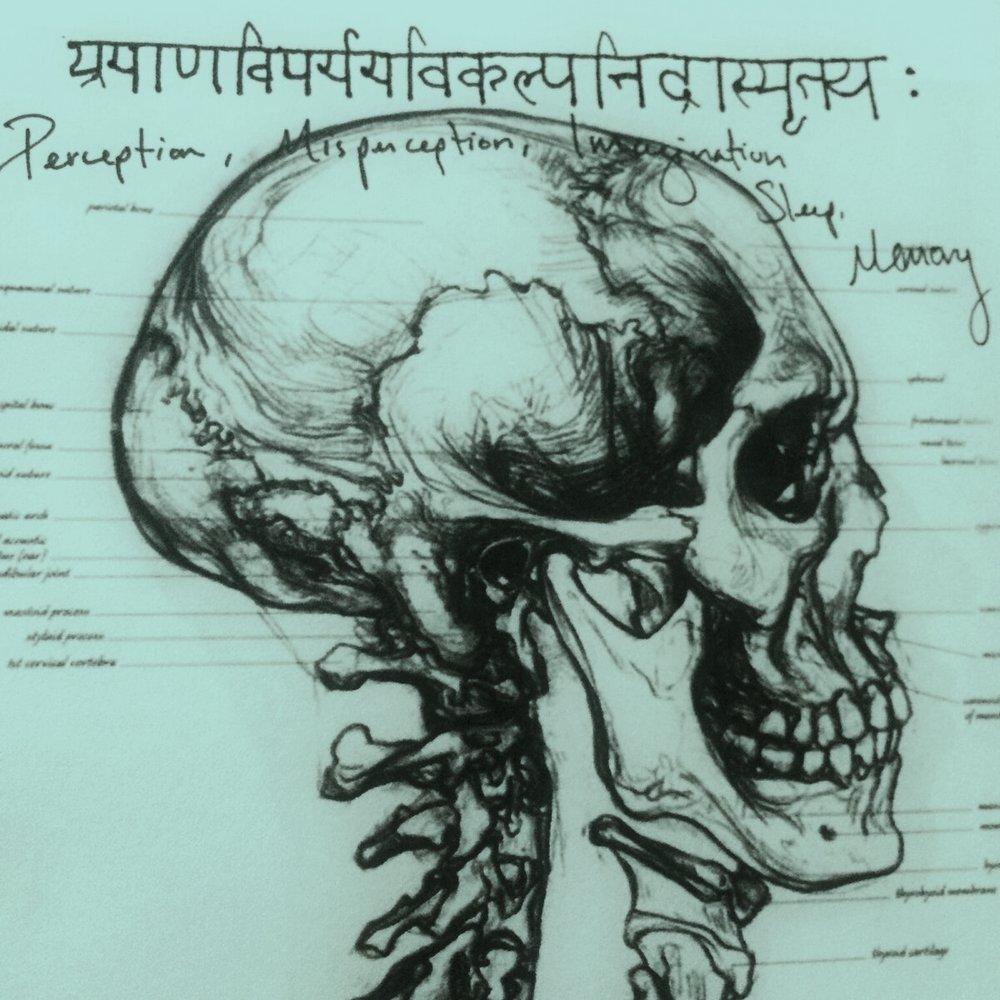 sanskrit skull paradiso.jpg