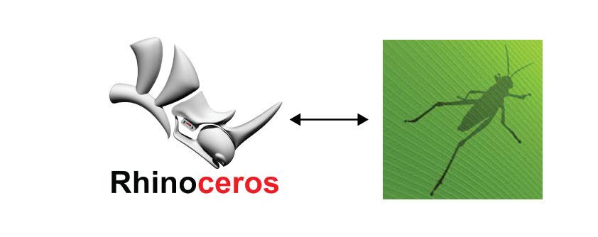 Rhino-Grasshopper.jpg