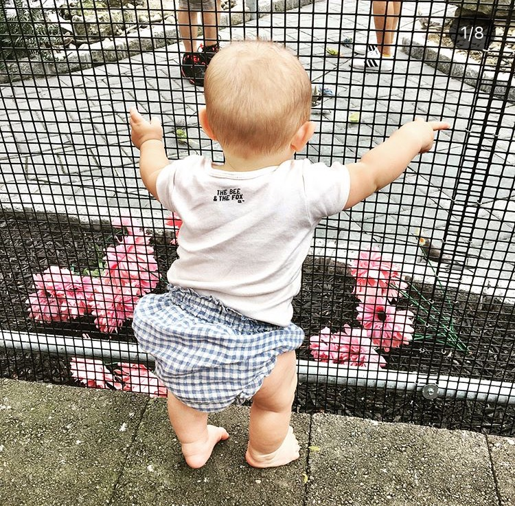 Standing proud and looking so cute in his Zara Baby bloomers and The Bee & The Fox onsie!