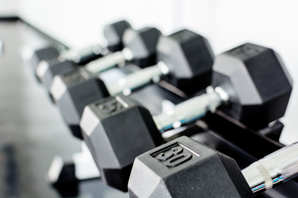 GYM & FREE WEIGHTS AREA  A comprehensive range of fitness equipment to keep you in shape, including a versatile 8 meter long fitness rig, exercise bikes, rower, treadmill, squat/deadlift stations, free weights, rings, ropes and heaps more.