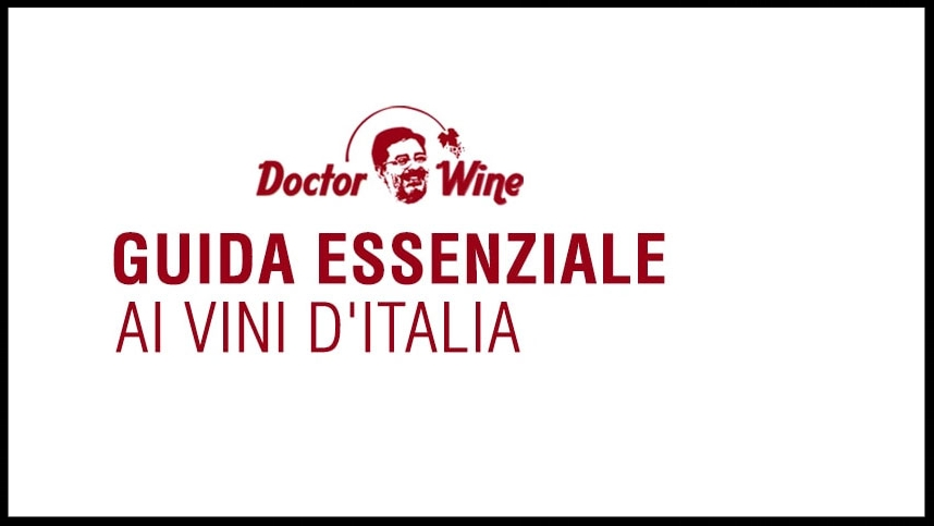 DOCTOR WINE - Magazine Online