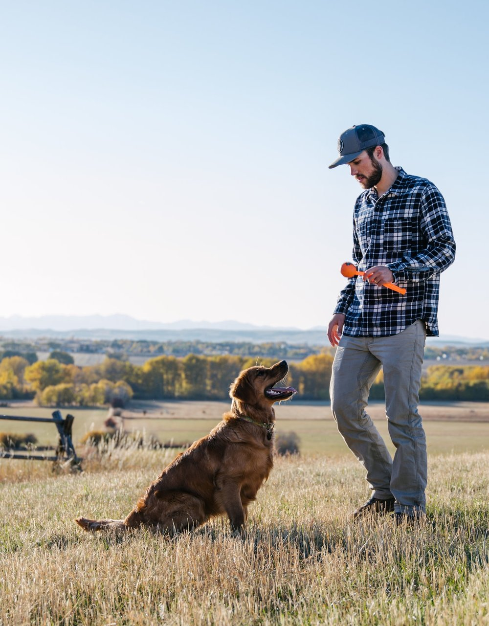 healthy drinks for your active pet