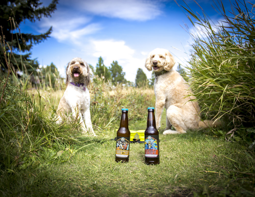 happy dog beer co creating healthy drinks for active and adventurous dogs based in bozeman, montana