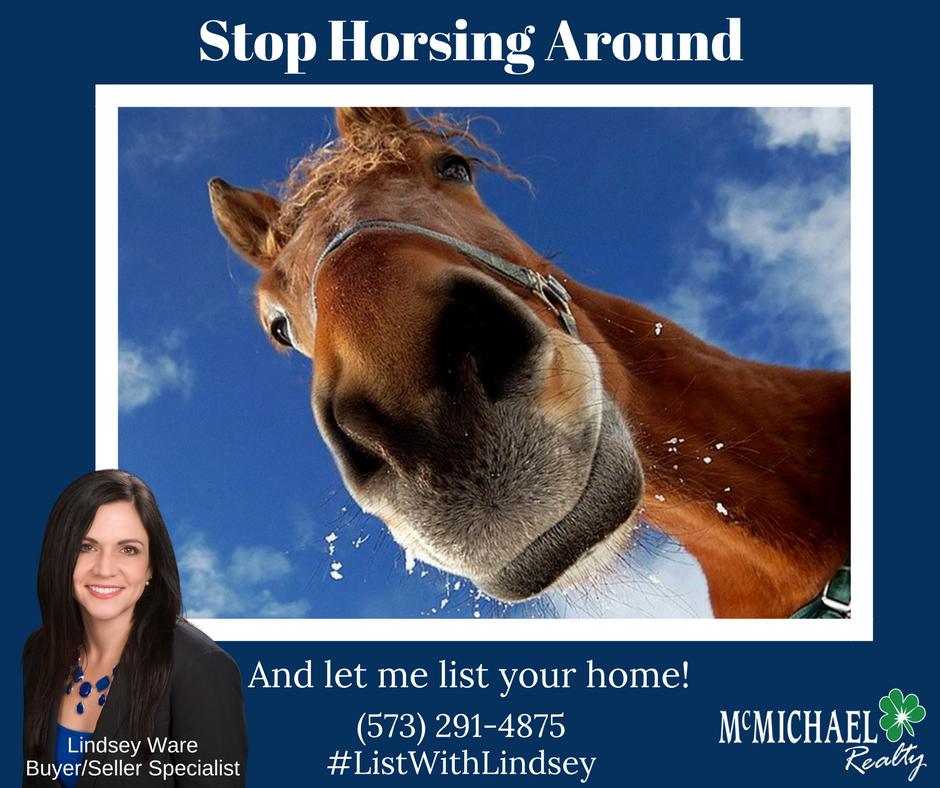 Stop Horsing Around.png