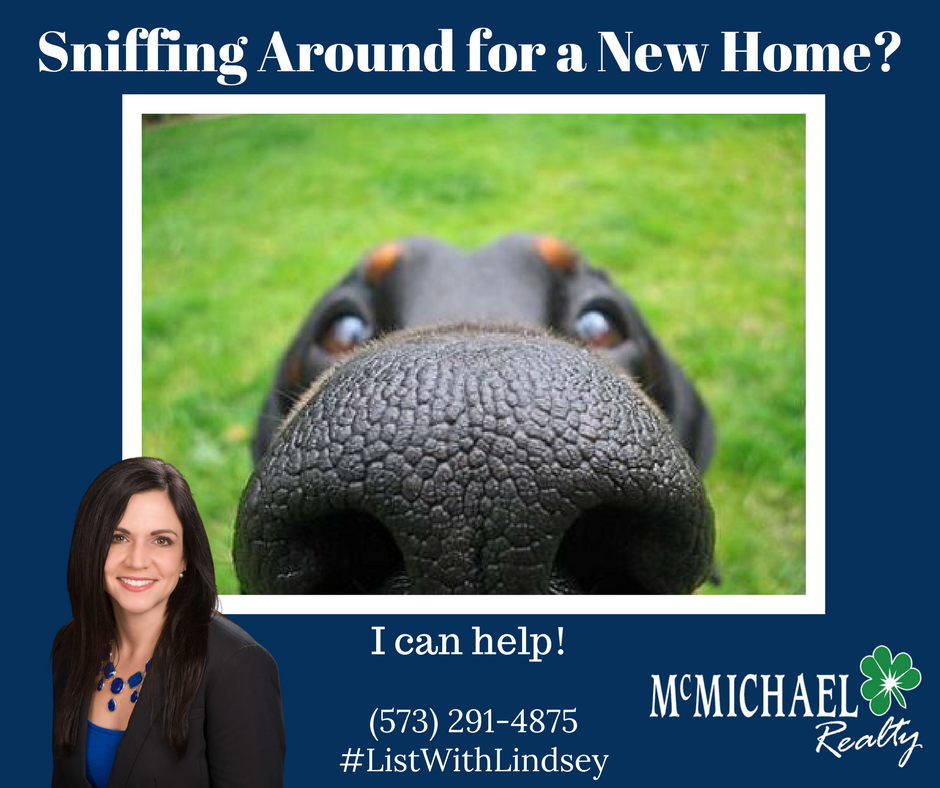 Sniffing Around for a New Home_.png