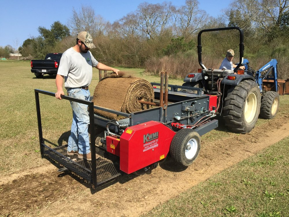Big Roll Sod to Sprigs
