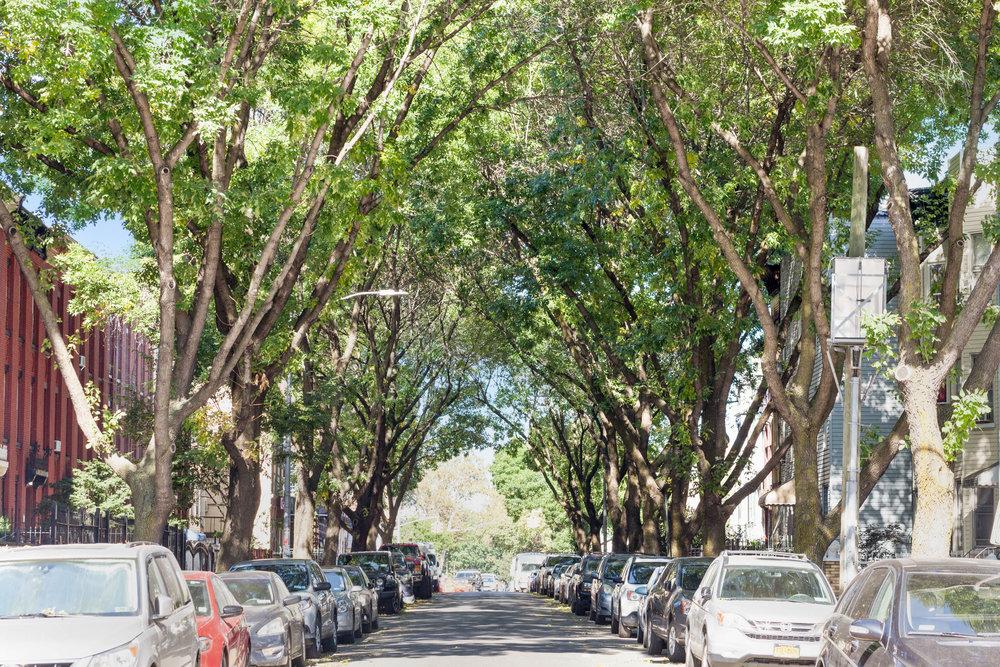 Bushwick_Street-3.jpg