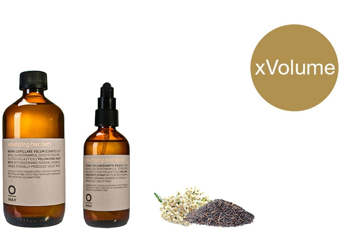 Volumizing.  For thin hair. Hair Bath $28 | Root Spray $35
