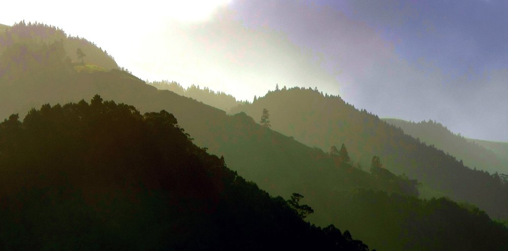 Azores Connections hillsides in the mist.jpg