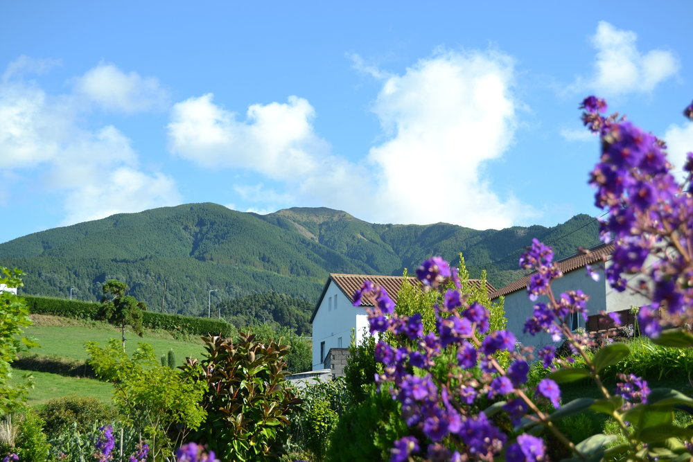 Azores Rustic Cottage Mountain view - Azores Connections.JPG
