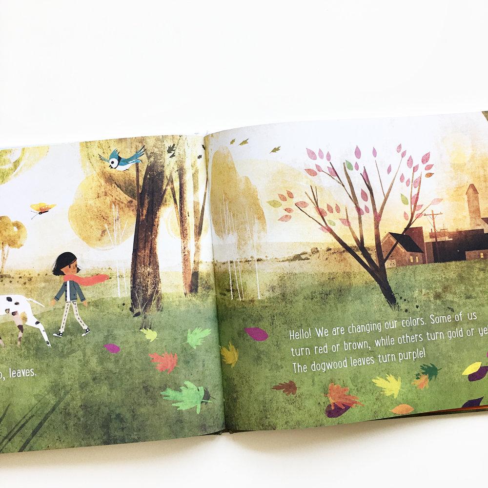 Goodbye Summer, Hello Autumn | Books For Diversity