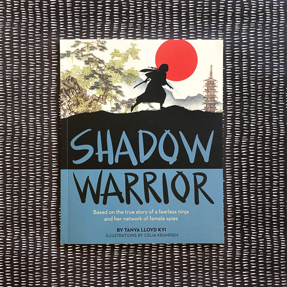 Shadow Warrior | Books For Diversity