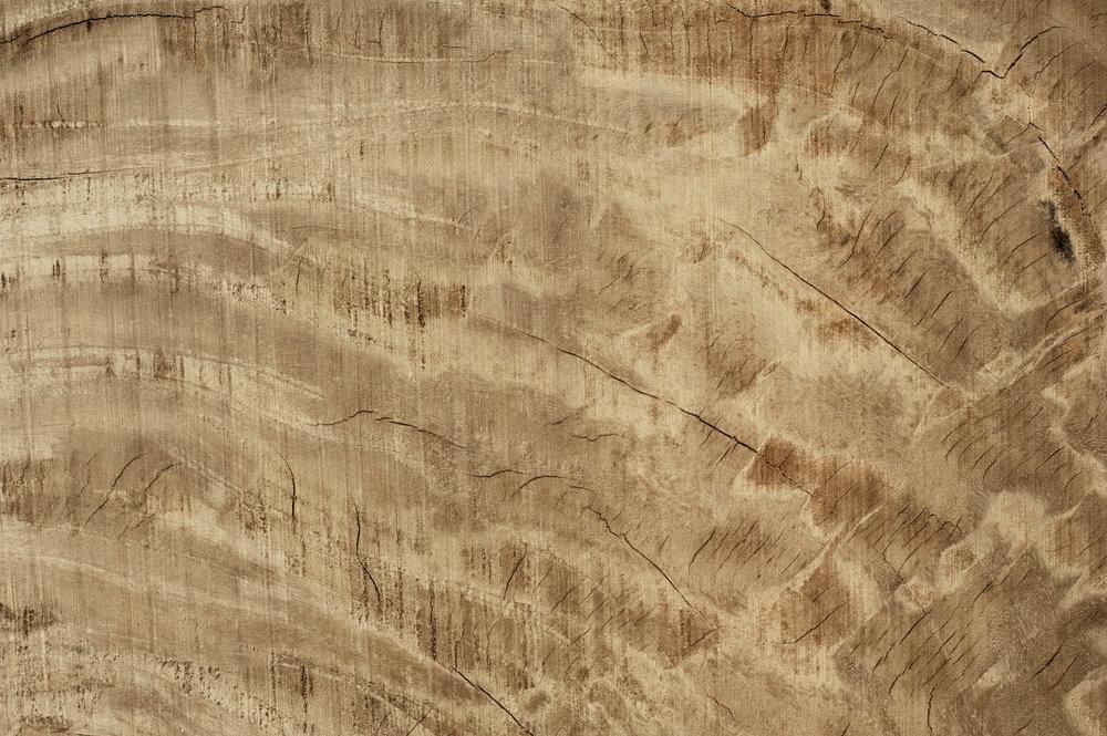 Wooddreamgarden2016.jpg