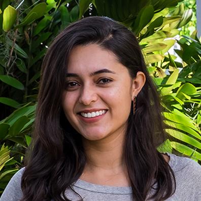 Viviana Castro   Designer