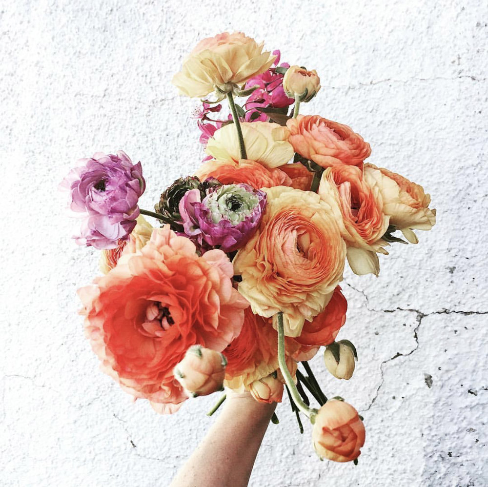 3 Leaf Floral - 3 Leaf Floral @3leaffloralIf you just need a dose of pretty, this is the page to follow. Kelly's relaxed style, and the natural beauty of her floral subjects, make this page easy to get lost in. We especially love #mugshot Mondays.