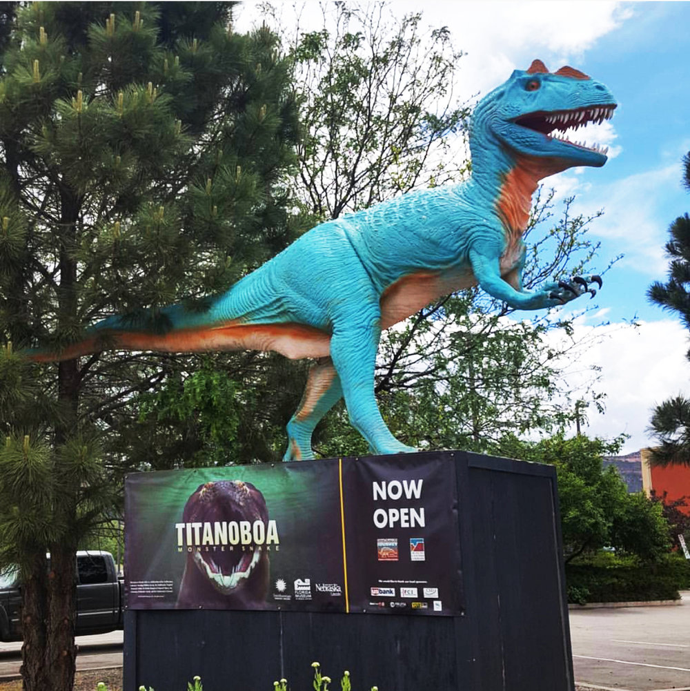 Dinosaur Journey and Museums of Western Colorado