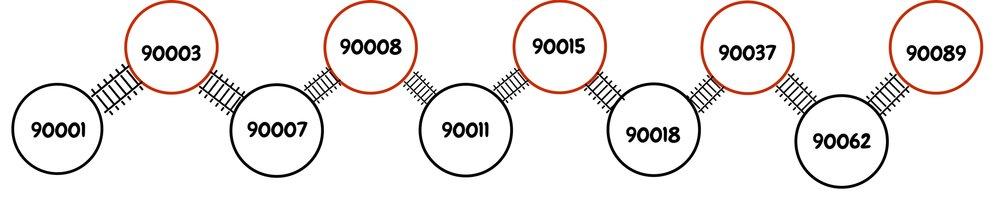 90001 (1).jpg