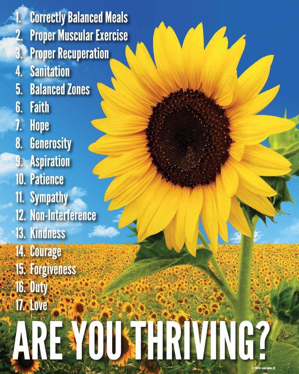 Thriving Poster Correct!.jpg