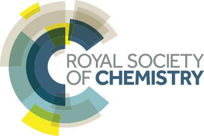 logo_RSC.jpg