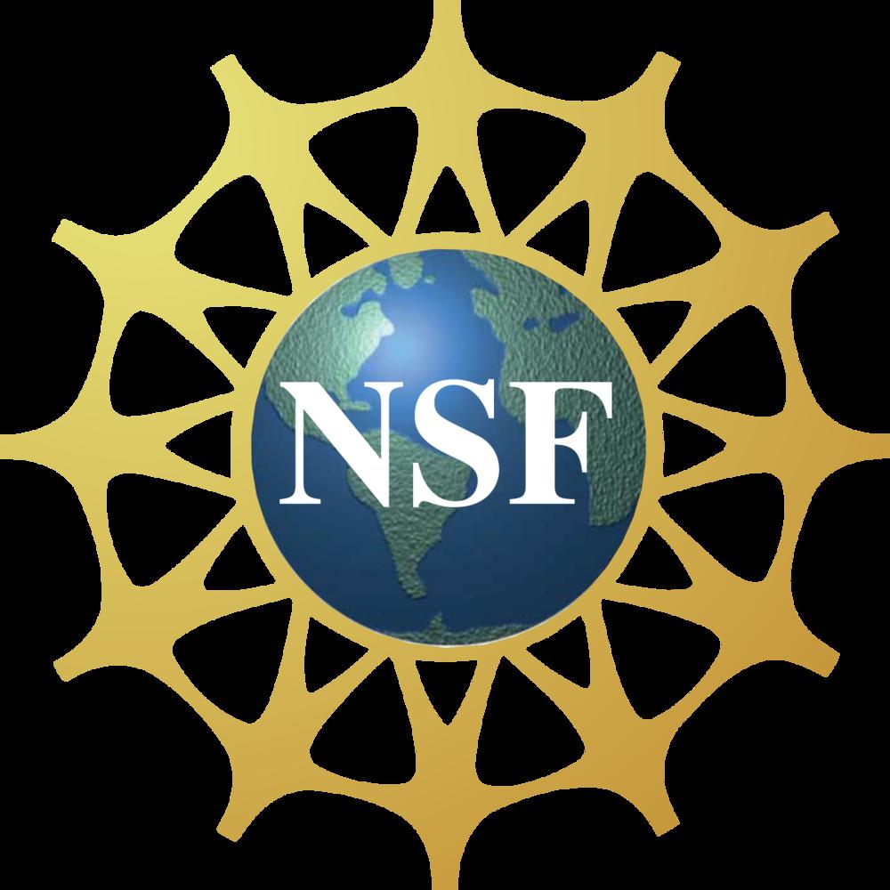NSF Logo 1200px-NSF.png