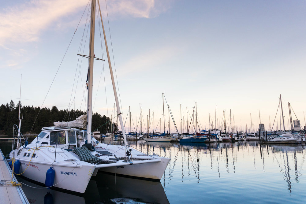 nanaimo-catamaran-dock-anderson-lg.jpg